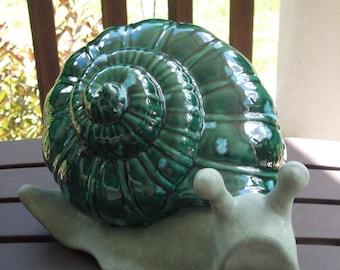 Glazed garden snail