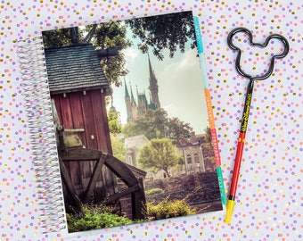 Disney World Erin Condren Life Planner Cover INSTANT DOWNLOAD - Cinderella Castle 7