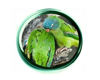 Blue-crowned Conure Glass Paperweight (PG-0772)