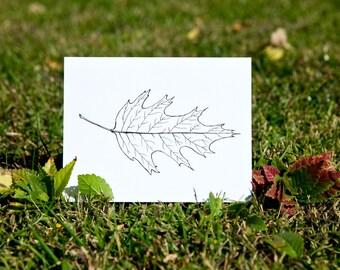 Red Oak Leaf Hand Drawn Blank Card