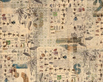 "Entomology by Tim Holtz-Neutral ""Electric Elements""- One Yard of Fabric.  Vintage, retro fabric, newsprint, insect fabric. Bug fabric."