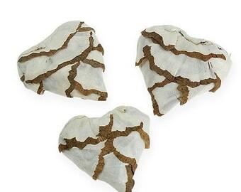 6 X sola hearts, potpourri, home decor, sola cabbage heart shapes, bowl display, Sola Wood Flower, wedding decor