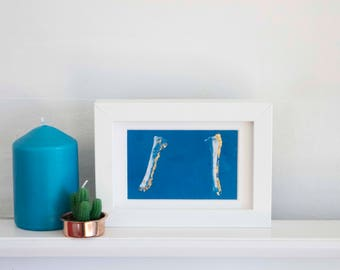 Cyanotype Hand Printed Photograph / Fine Art Print with 24c Gold Leaf / Bones / Sheep Bone / Scotland / Skeleton / Anatomy / Anatomical