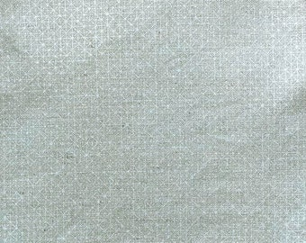 Sparkle Canvas - Metallic from Cotton + Steel