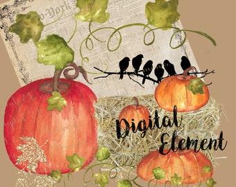 Digital Clipart, Digital Watercolor Clipart, Hand Painted Pumpkin Clipart, Clipart, Thanksgiving Clipart, Scrapbook, Decoupage. No. E34