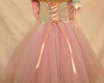 Fairy Dress with wings