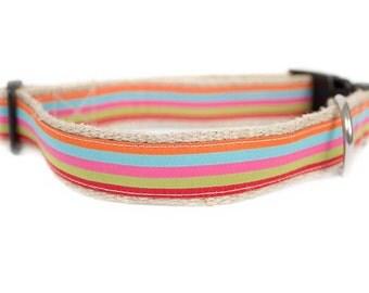 Dog collar / leash STRIPES SUN