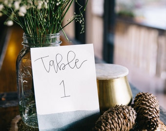 Table Numbers -- Wedding, Birthday, Any Event