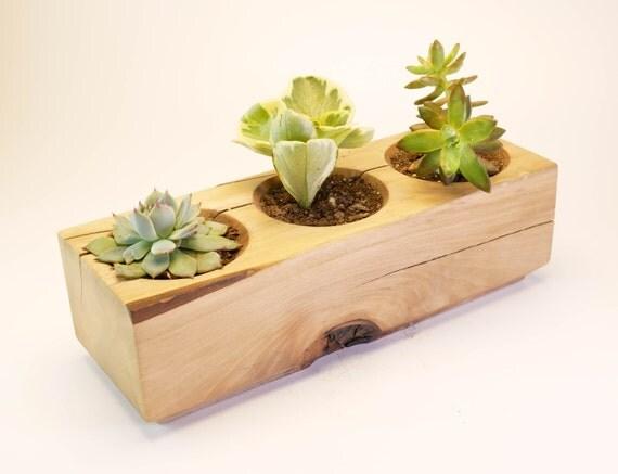 Wood planter set succulent garden indoor planter cactus for Wooden cactus planter