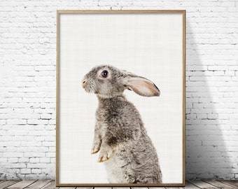 Nursery rabbit print, Rabbit print art, Rabbit print decor, Woodland nursery, Rabbit wall art, kids room decor, Baby rabbit print, Gift