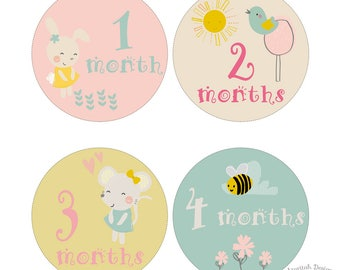 Printable Baby Milestones | Baby Month to Month Stickers | Baby Girl Garden Stickers | Instant Download