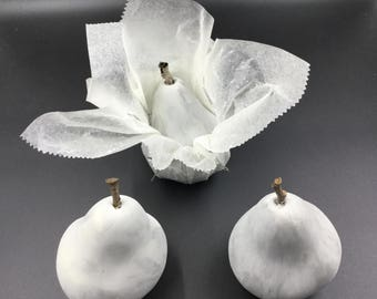 Faux Cement Pears