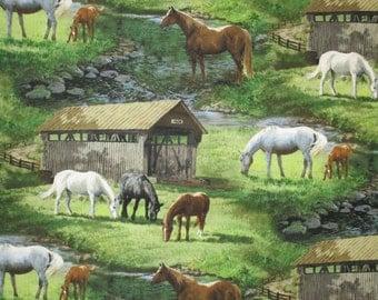 Scenic Bridge,Horse in pasture, Springs
