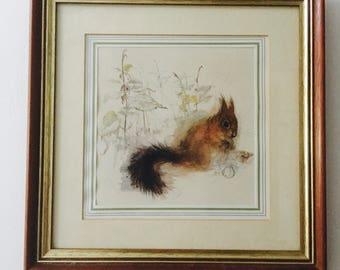 Vintage Framed Print or Original of a cute Squirrel