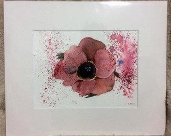 "Poppy fizz 12"" x 10"" Original watercolour painting"