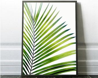 Palm leaf Print, Coastal Print, Tropical Leaf, Tropical Leaf Wall art, Printable Beach Decor, Exotic Plant Prints, Leaf Poster, Sale Prints