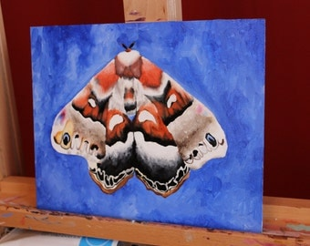 Moth Original Oil Painting