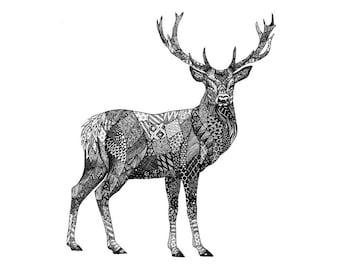 Deer stag print, woodland animals, hunting decor, animal drawing, printable art,  instant download, wildlife art, wildlife prints