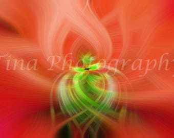 Photography wall art, photography wall decoration, meditation photography, spiritual photography, abstract art, healing art photo