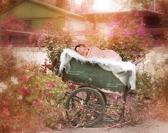 New born Digital backdrop  /wagon/flowers/garden/prop