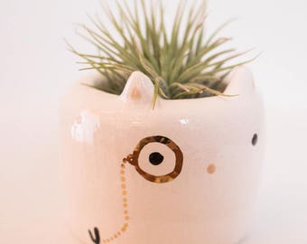 Cat Monomal (Cat animal planter, Cute vase, animal monocle planter, animal plant)