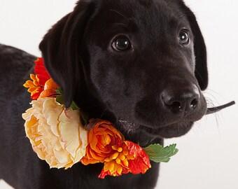 ANNA- Wedding Dog Collar, Dog Flower Crown, Floral Dog Collar, Spring Wedding, Boho Wedding, Bohemian Wedding, Dog Flower Girl, Pet Wreath