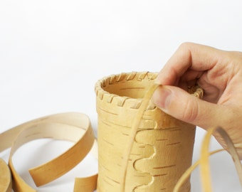 Handcraft kits birch bark: DIY - Birch can do it yourself (tea pots made of natural material)