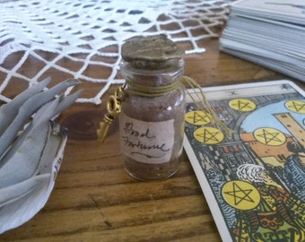 Good Fortune Powder from The Cunning Toad a curio to draw and protect money and good fortune (sold as curio)