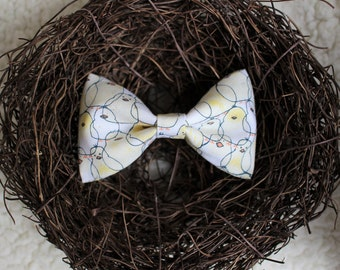 """Cat Bow tie """"Just Hatched"""""""