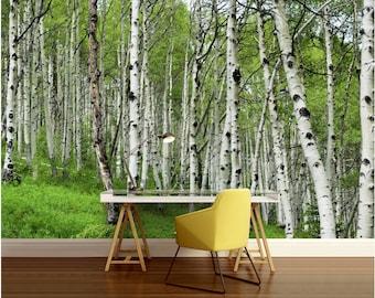 Birch tree wallpaper etsy ca for Birch tree mural wallpaper