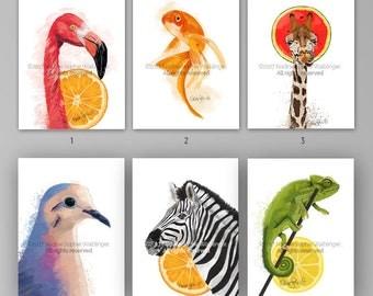 Postcard Set, Greeting Cards, Postcard Art, Postcard Prints, Flamingo Art, Goldfish Art, Giraffe Art, Bird Art, Zebra Art, Chameleon Art