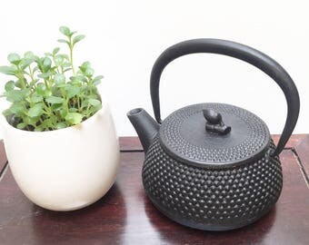 Japanese Cast Iron Teapot with Arare Pattern