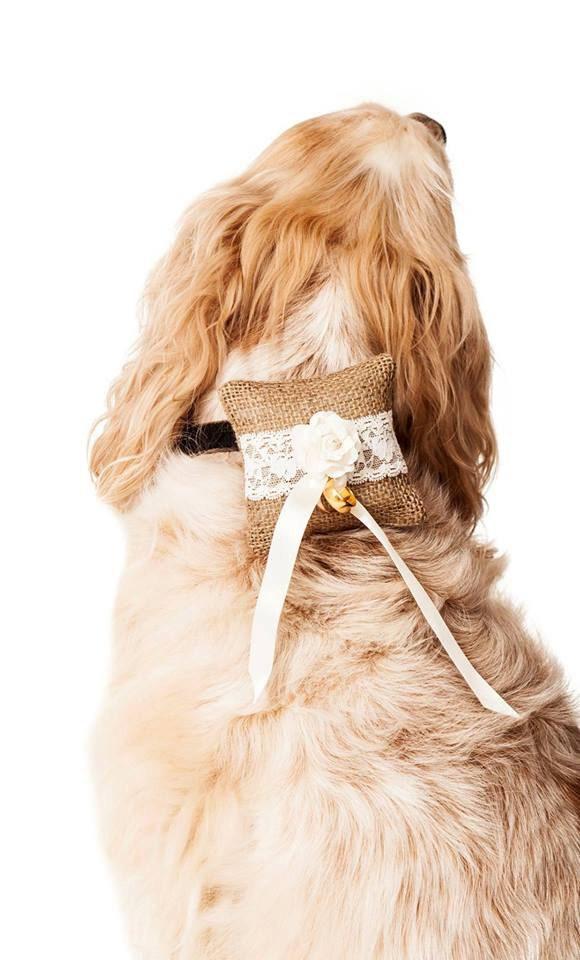 Dog Ring Bearer Cushion Uk