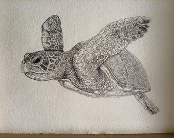Pointillisim Turtle Print
