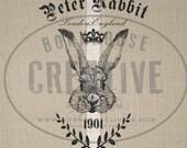 Peter Rabbit Digital Download Printable Transfer