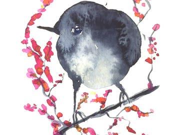 Original blue bird painting-watercolor painting-bird-indigo bird indigo-bird illustration-oiseau-bird drawing-wallart-zenwatercolors