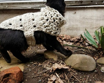Large Plus Sized Cat Sweater