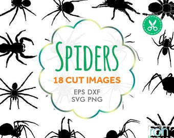 Spider Svg, Spider Clipart, Spider Silhouette, Insect Svg, Tarantula, Svg Silhouette, Svg Cutting File, Cuttable Svg, Svg Bundle, Svg Cuts