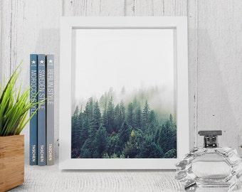 Forest Landscape photo, Nature mist print, printable landscape, Mist Forest wall art, Zen poster, wilderness wall art, landscape print.