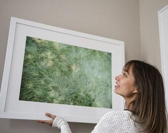 summer grass, nature art, grass print, nature photography, minimalist photo, art print