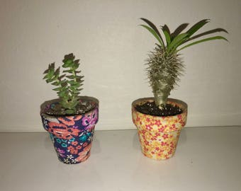 Mini Custom Ceramic Pots
