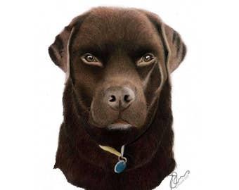 A4 Colour Pet/Animal Portrait