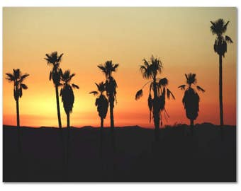 Hollywood palm tree Sunset Canvas