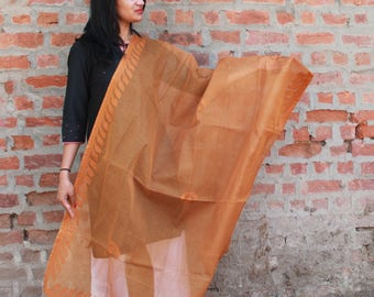 Brown Organdy Half trellis in Applique Dupatta