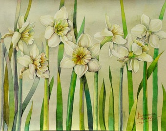 Floral Fine Art Watercolor Painting Daffodils Flower Art - Original Watercolour Home Decor