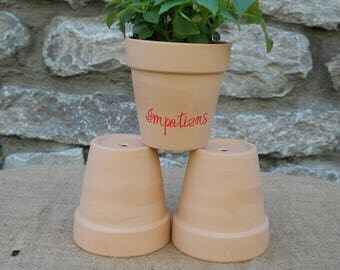 Clay Flower pot Seed Starting Kit