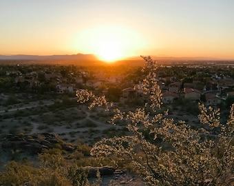 Desert Sunrise Photo