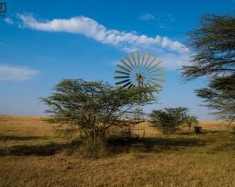Kenya Windmill