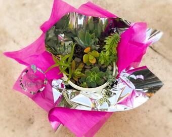 Little Succulent Arrangement Box