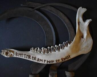Viking runic engraved Odin's wolves burnt elk jawbone